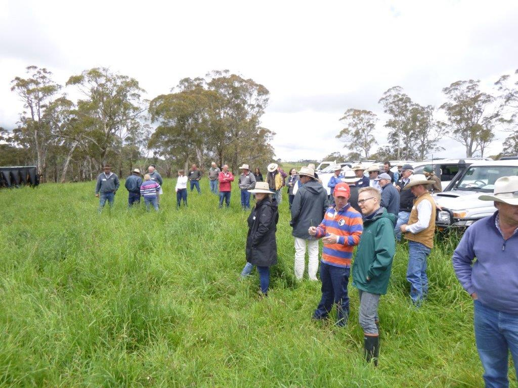 Property Tour Day Discussing Grazing Principles Held at Wilmot